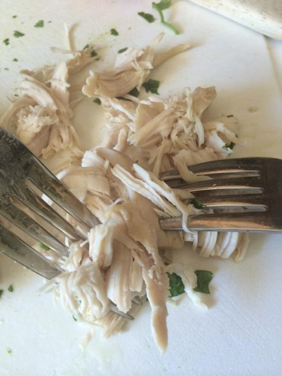 Two forks pulling a cooked chicken breast apart