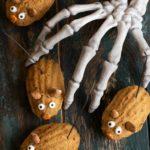 Fall Time Gluten Free Pumpkin Madeleines