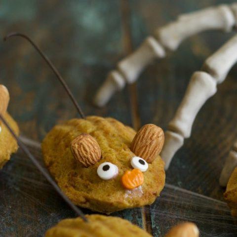 Gluten Free Chocolate Dipped Pumpkin Madeleines