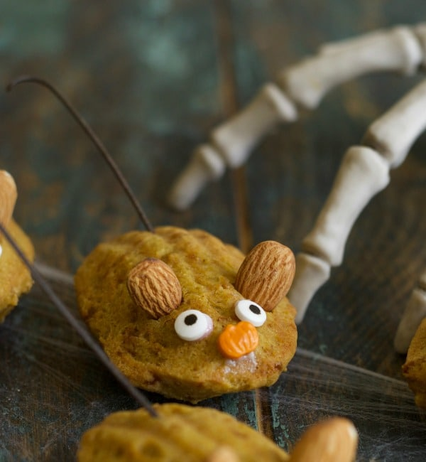 close up of the mouse gluten free pumpkin madeleine cookie