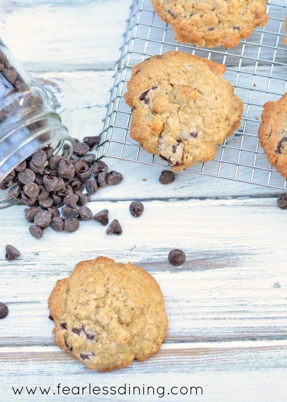 Gluten Free Coconut Oatmeal Chocolate Chip Cookies on a cooling rack. Chocolate chips are spilled next to the rack