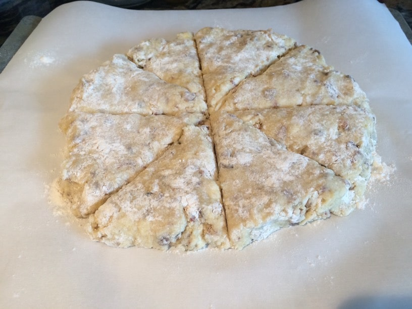 date scone dough pressed into a circle. Cuts are made to make triangle scones