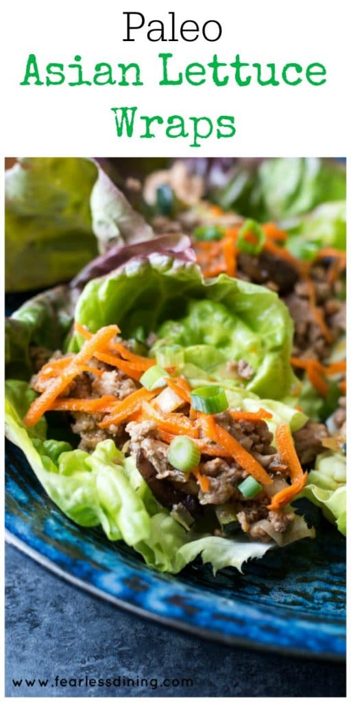 Paleo Asian Lettuce Wraps found at https://www.fearlessdining.com