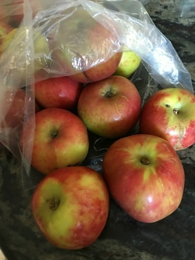 a bag of gravenstein apples on the counter