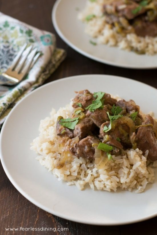 A plate with lamb and hatch chile stew over a bed of rice.