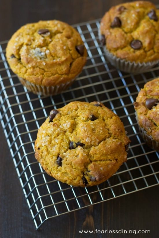 top view of pumpkin chocolate chip muffins on a cooling rack