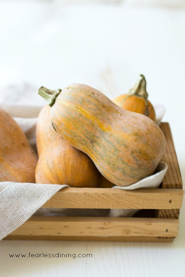 Honeynut Squash in a basket