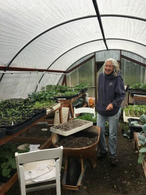Wente's Organic Garden with master gardener Diane.