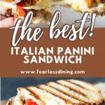 a pinterest collage of panini photos