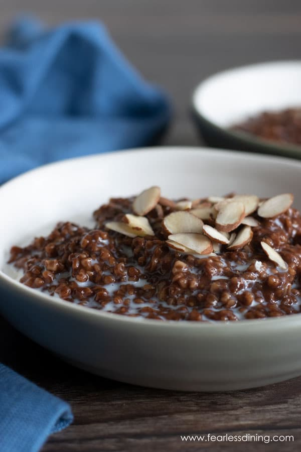 close up of the chocolate steel cut oats in a bowl