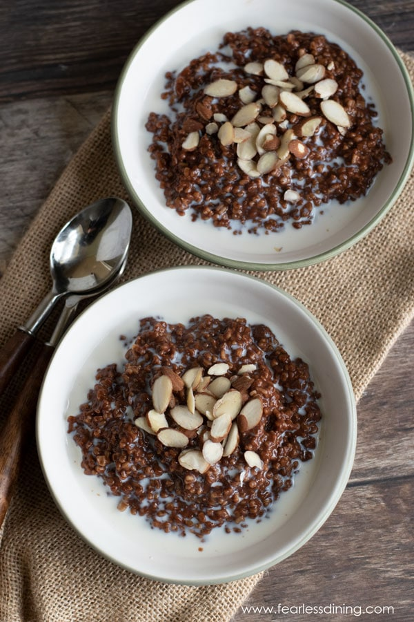 top view of two bowls of gluten free chocolate steel cut oats