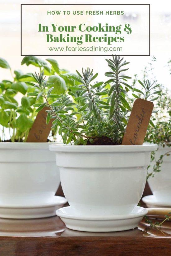 herbs growing in pots on the kitchen windowsill