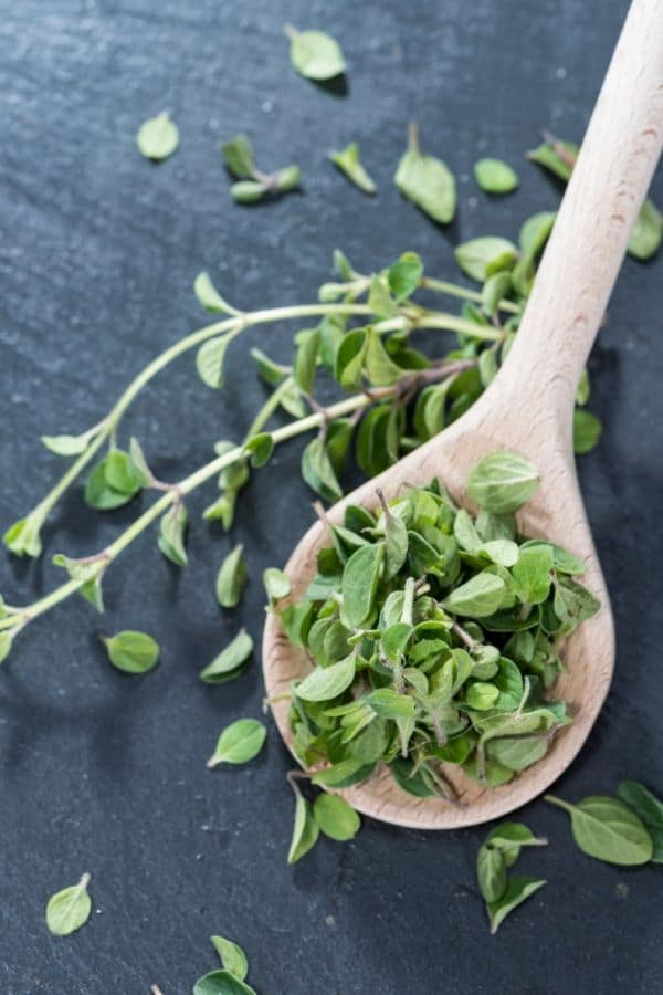Fresh oregano leaves in a wooden spoon