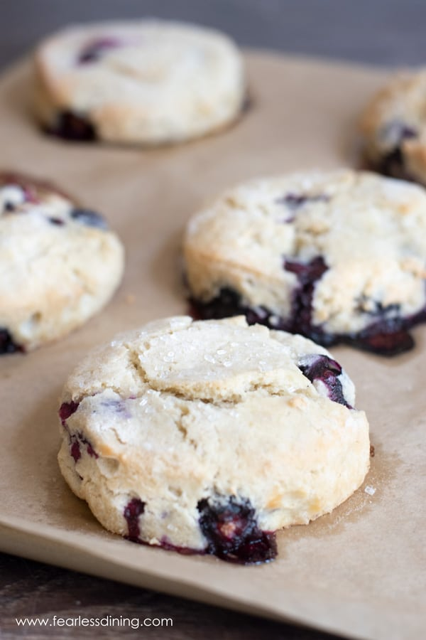 gluten free blueberry scones on a baking tray