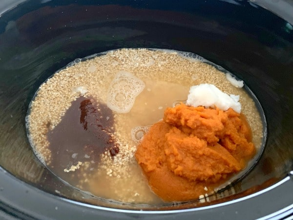 slow cooker pumpkin oats ingredients in a slow cooker