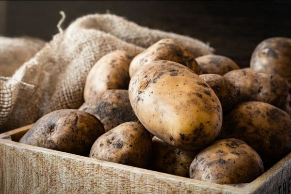russet potatoes in a wooden box next to burlap