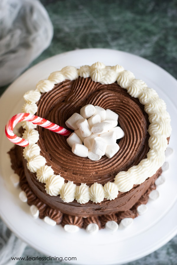 top view of the gluten free chocolate mint cake with mini marshmallows on top