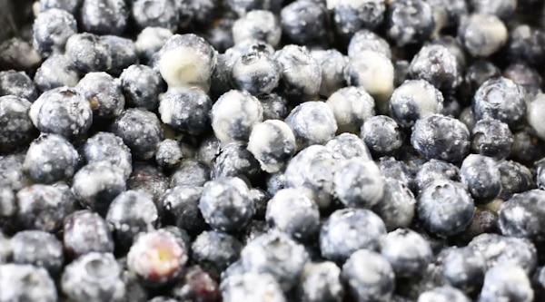 Blueberries coated in sugar