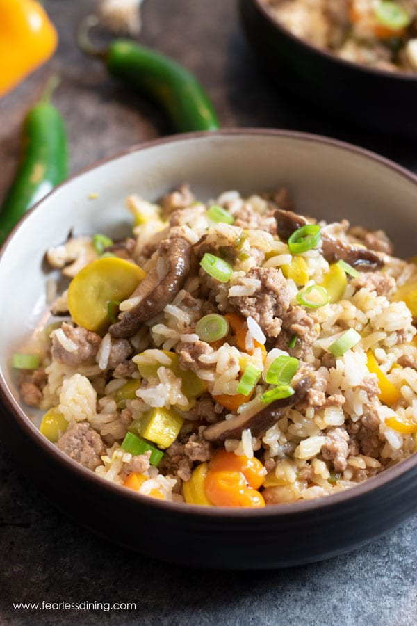 A close up of a bowl full of ground pork fried rice. It is topped with fresh scallions