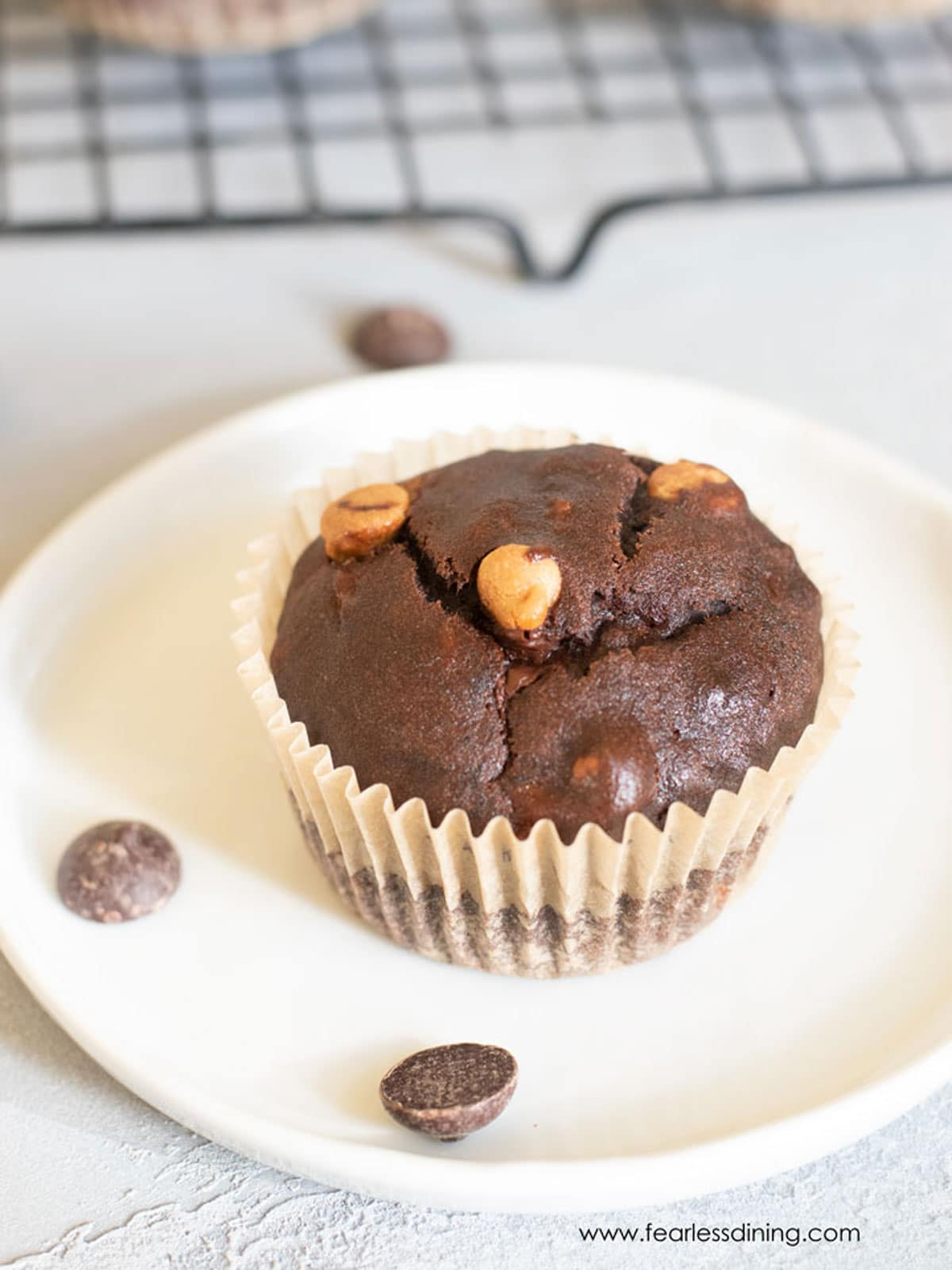 A chocolate muffin with chips on a plate