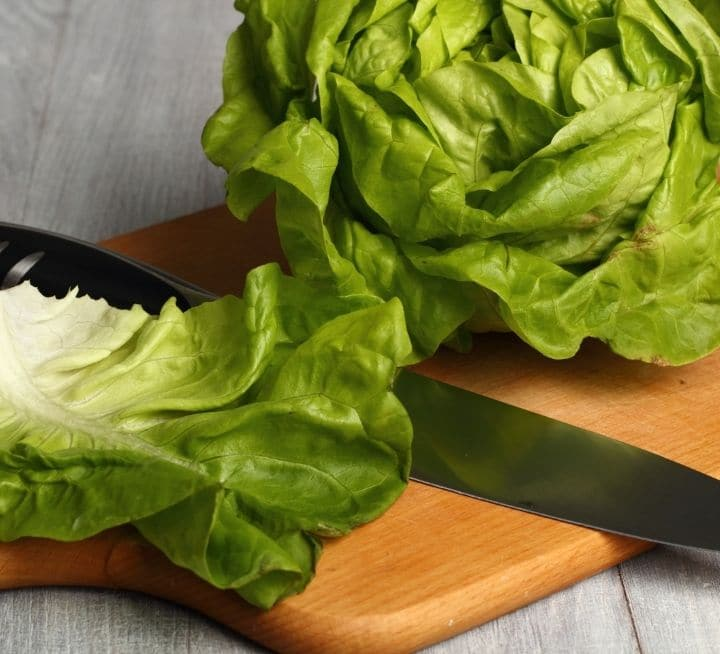 butter leaf lettuce on a cutting board