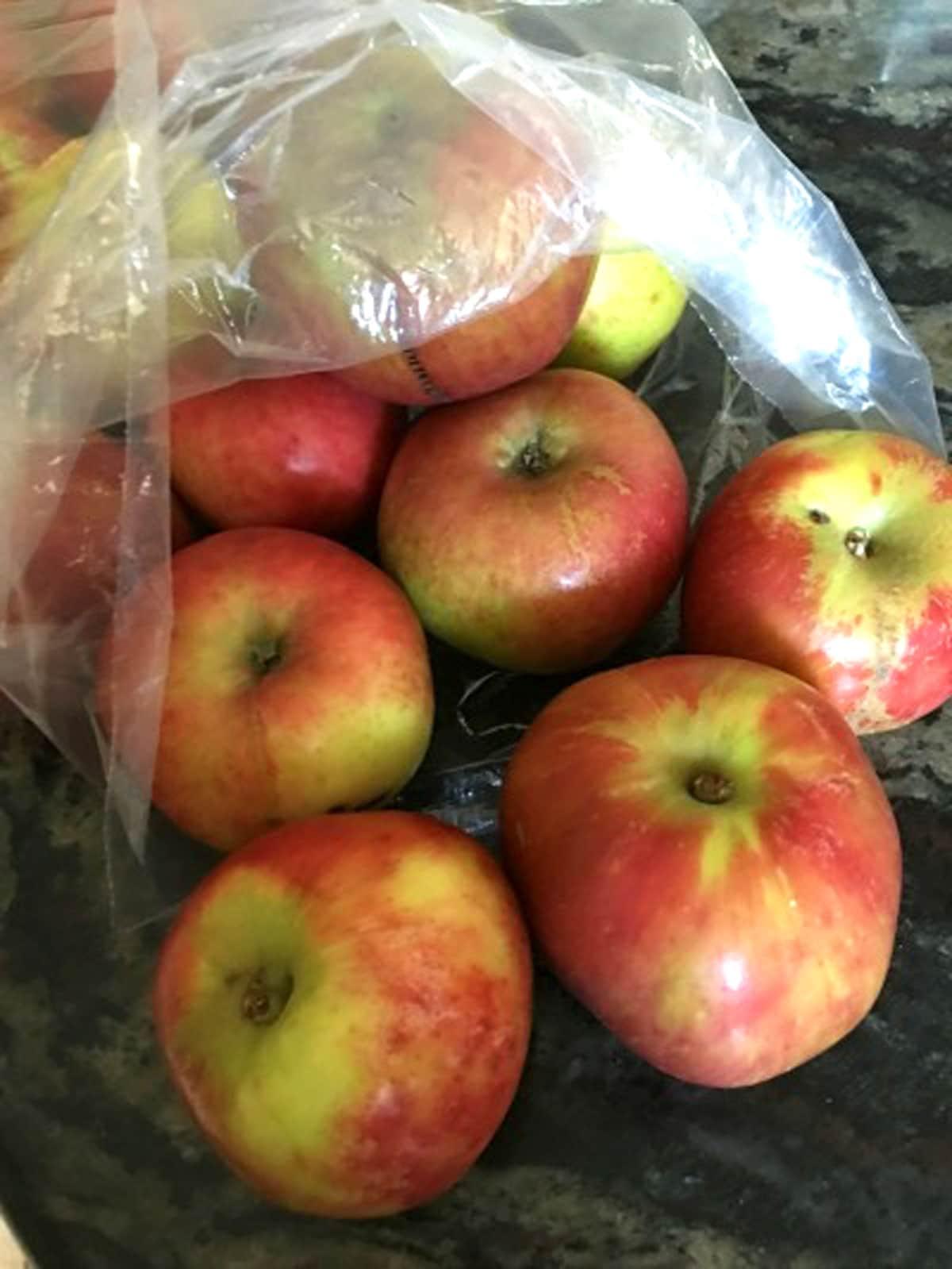 a bag of gravenstein apples