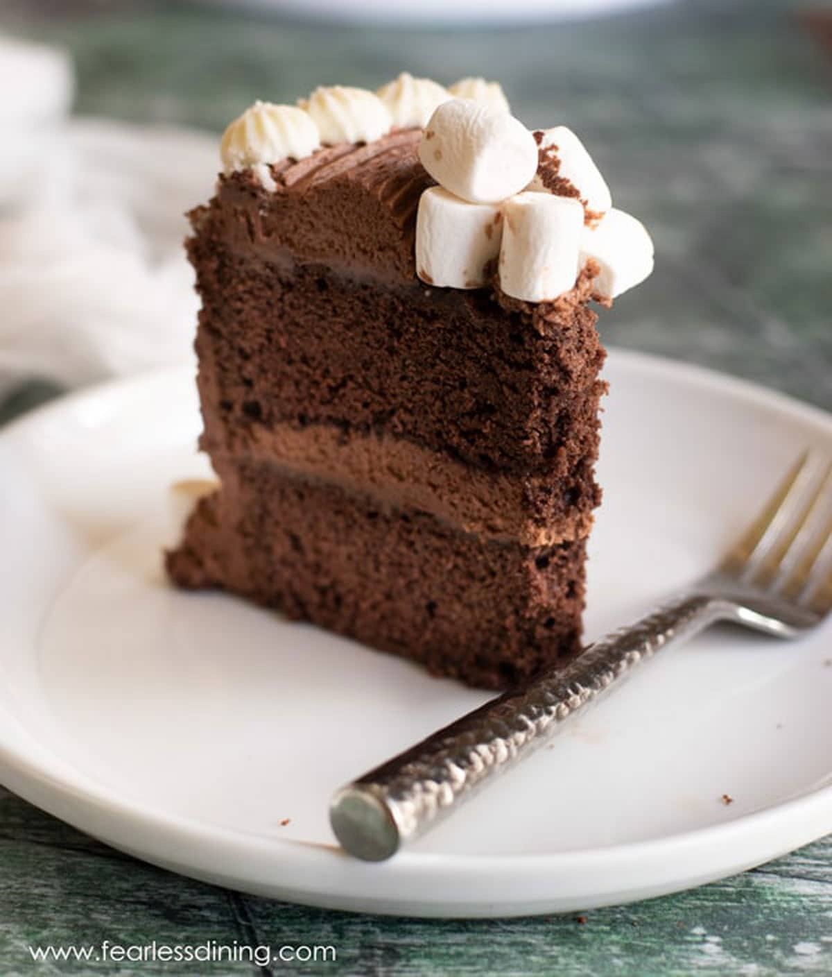 a slice of chocolate cake standing up tall on a plate