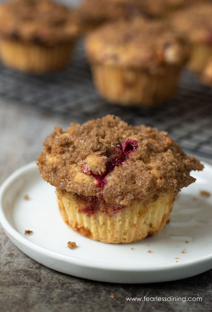 a gluten free cranberry muffin on a small white plate