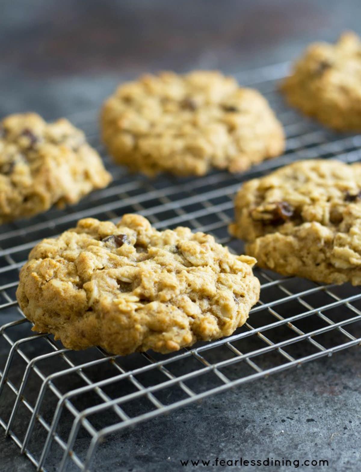 oatmeal raisin cookies on a rack