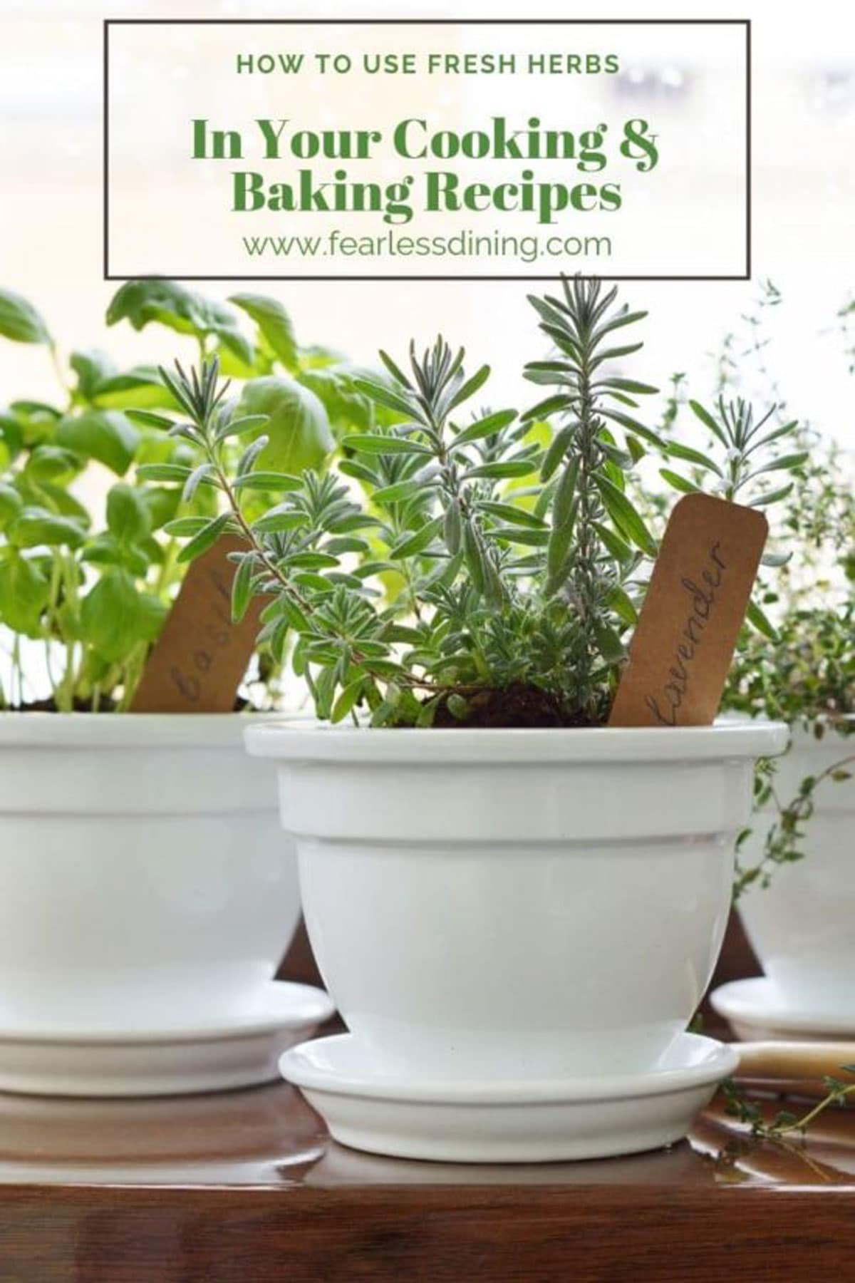 white flower pots with fresh herbs growing in them