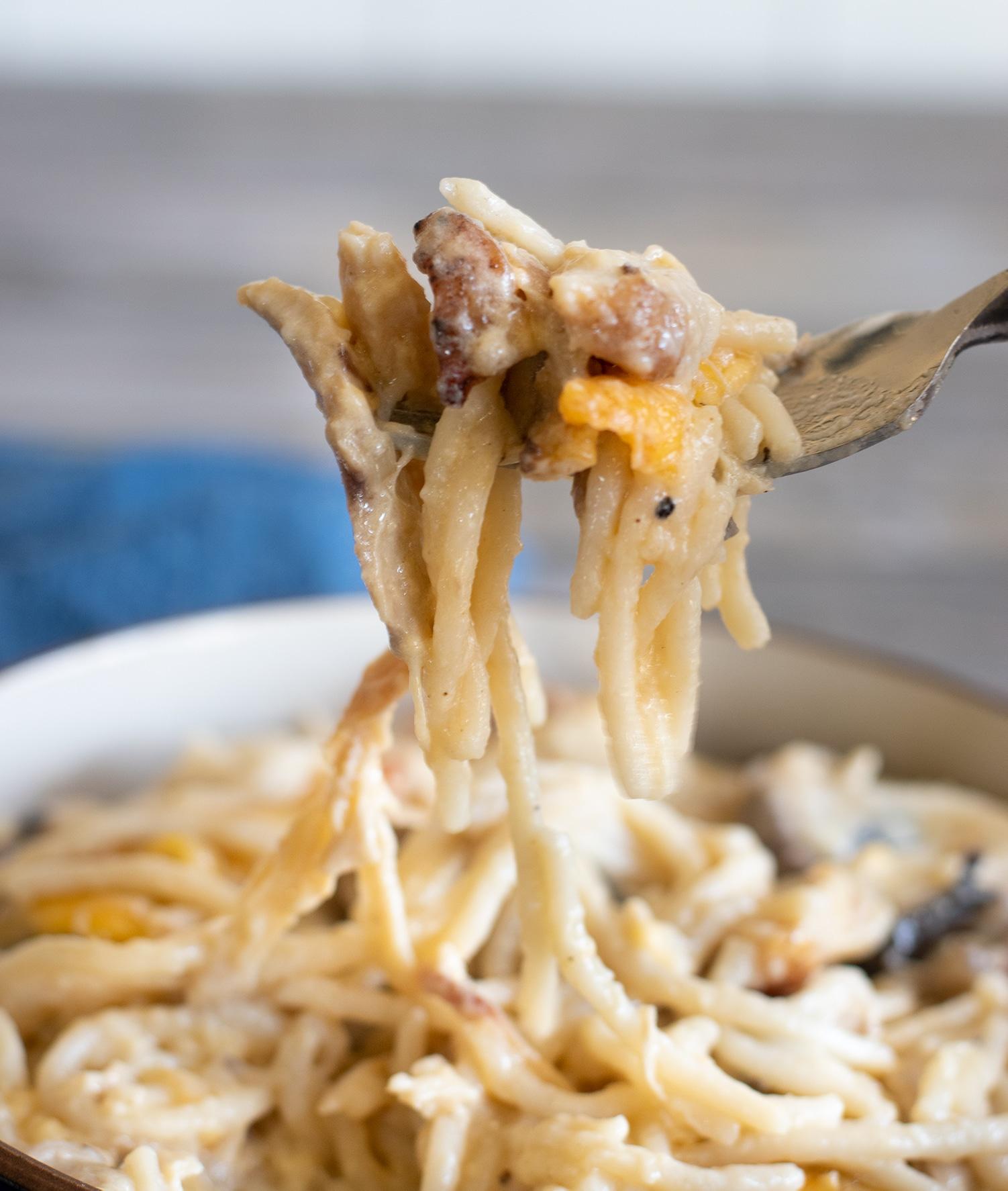 a forkful of gluten free chicken tetrazzini