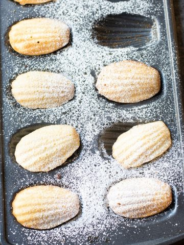 a tray of gluten free madeleines dusted with powdered sugar
