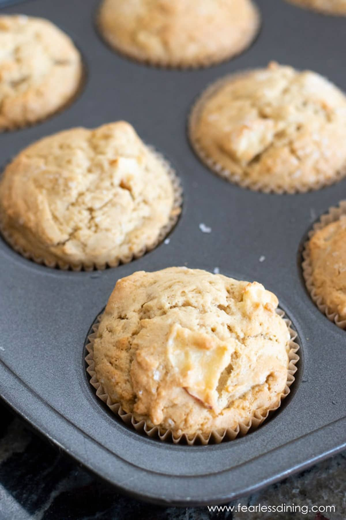 baked gluten free apple muffins in a tin