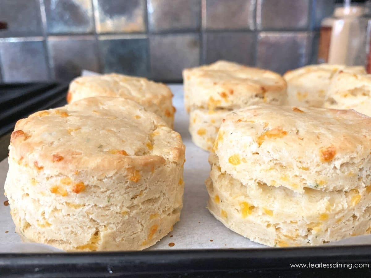 biscuits right out of the oven