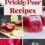 a pinterest pin with prickly pear photos