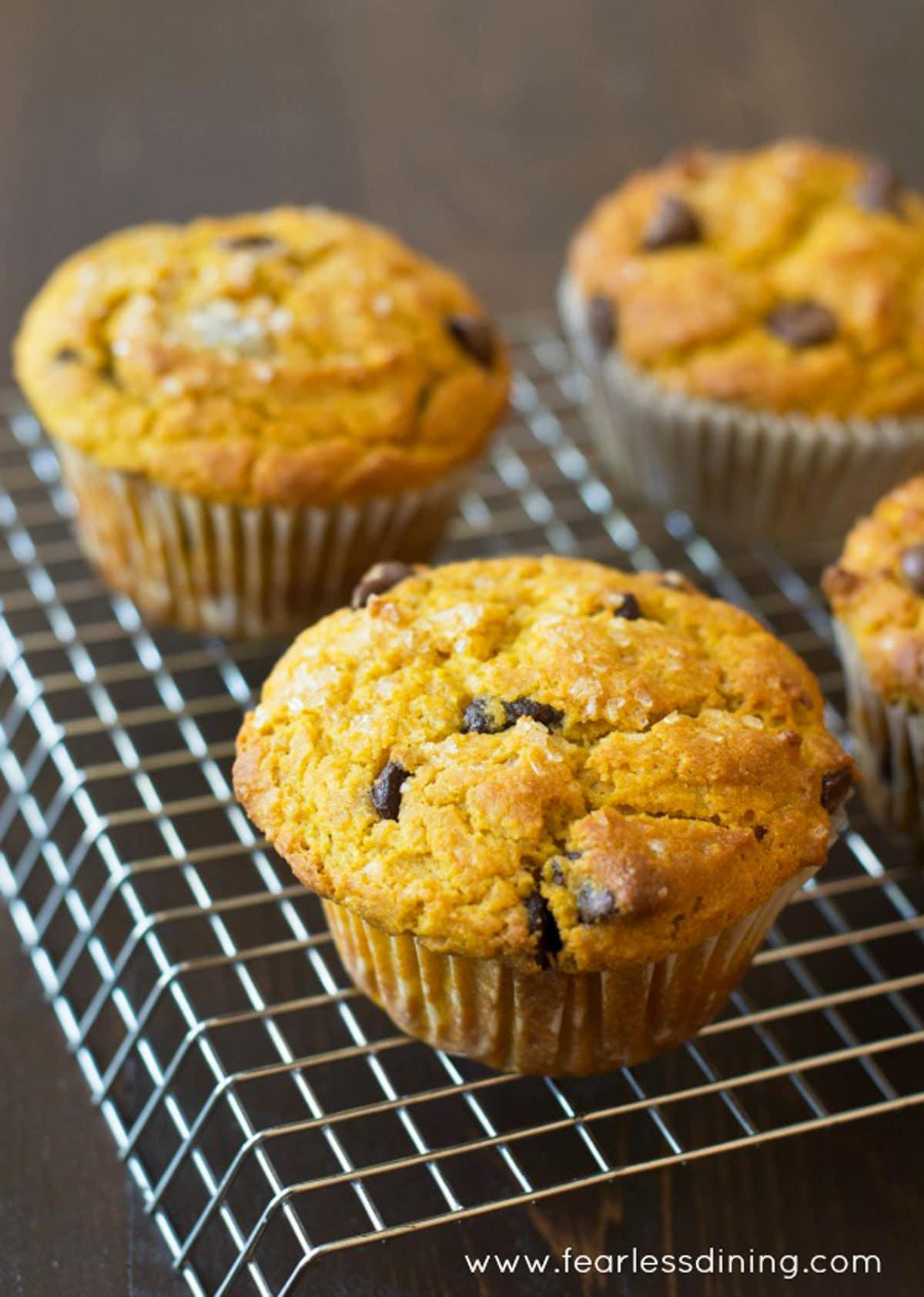 pumpkin muffins cooling on a rack
