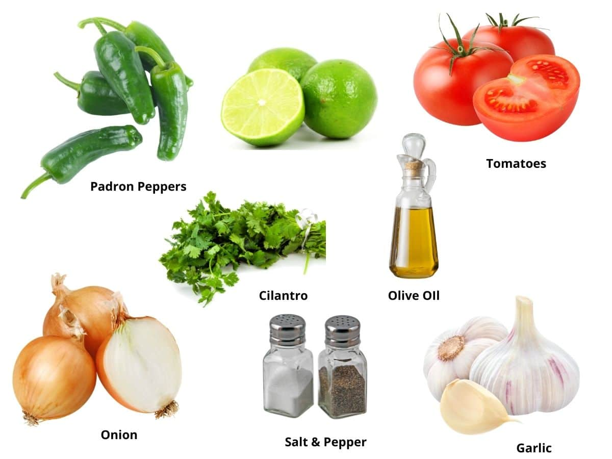 padron pepper salsa ingredients