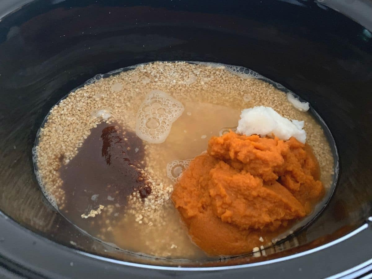 all of the pumpkin oats ingredients in the slow cooker