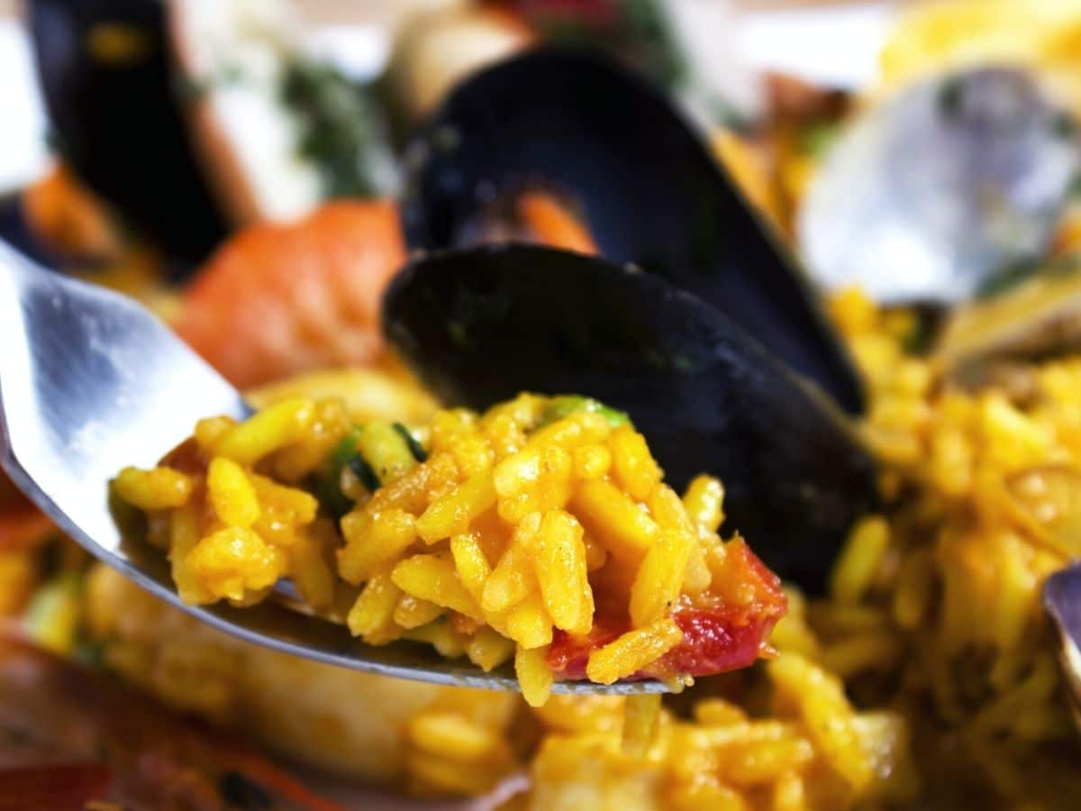 a forkful of paella